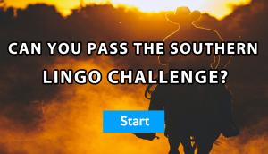 southern-lingo